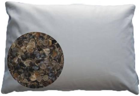 Beans-72 Organic Buckwheat Pillow